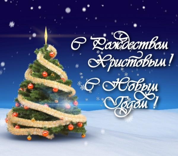 Новогоднее интро Sony Vegas #186