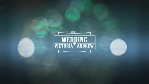 Красивая заставка свадебного фильма